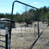 Stud pen Walk-thru gate
