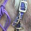 Paracord collar - Bit