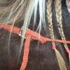 Closeup - haystring braided balancing side reins